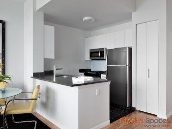 ***Live In Style! Luxury 1BR! ONE MONTH FREE!!! NO BROKERS