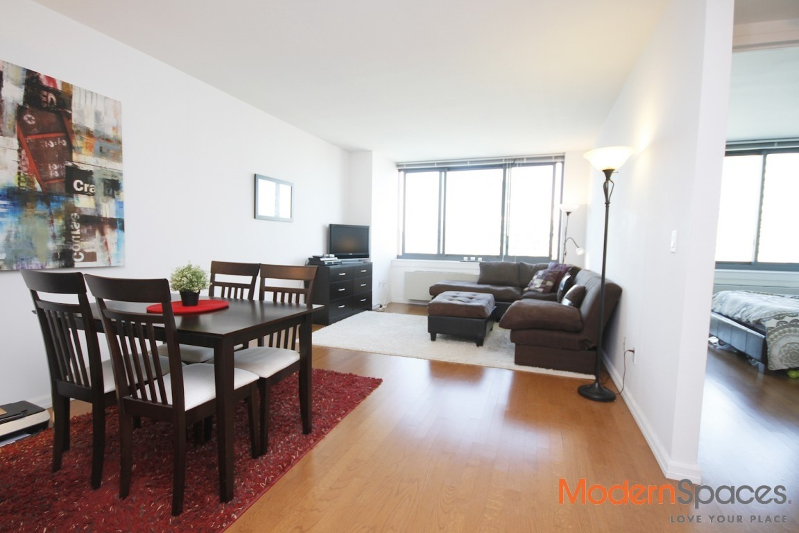 No Fee LIC Large One Bedroom – City and River Views – High Floor