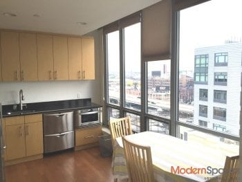 Luxury LIC One Bedroom with Views for Rent
