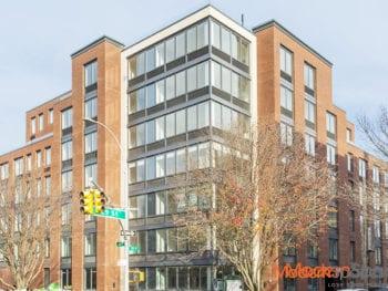 Brand New Luxury Building In Astoria