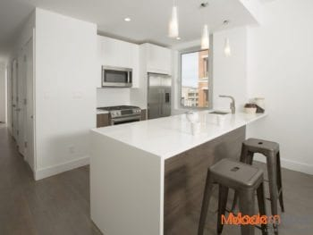 2BR 2 Bath Penthouse With Private Terrace