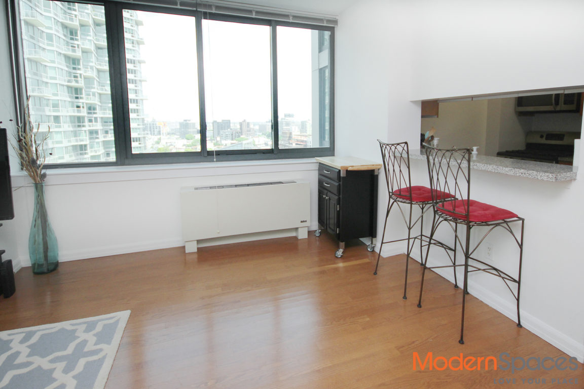 No Fee LIC Large One Bedroom – City and River Views
