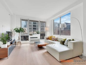 LIC Sunny 1bedroom for sale at the Luxury Vista condominium